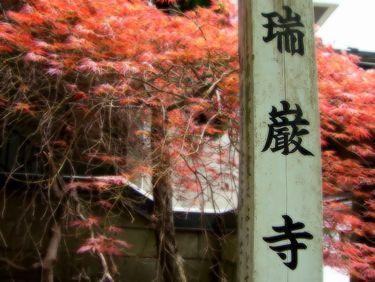 matushima2.jpg
