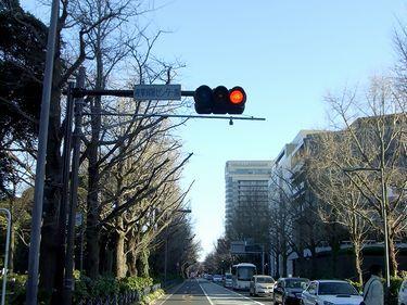 y-shitami1.jpg