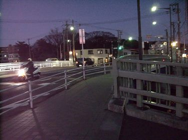 y-shitami14.jpg