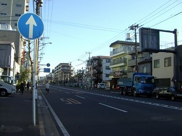 y-shitami3.jpg